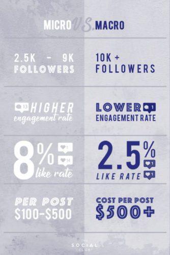 Micro vs Macro infographic